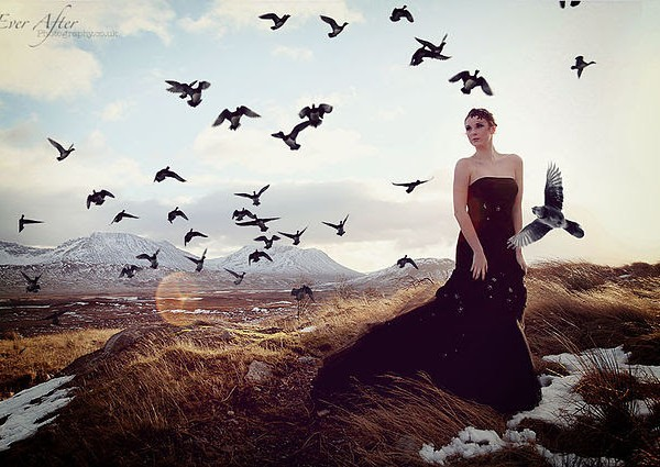 I'll spread my wings and I'll learn how to fly...